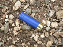 蓝色弹药筒 库存图片