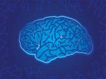 蓝色技术脑子 库存例证