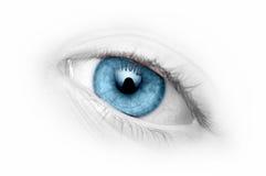 蓝色接近的眼睛 库存图片