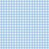 蓝色方格花布光 库存图片