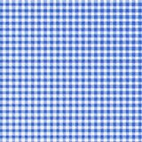 蓝色方格花布光 库存照片