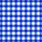 蓝色方格花布 库存图片