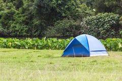 蓝色旅游帐篷在森林里 免版税图库摄影
