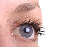 蓝色明亮的眼睛 库存照片