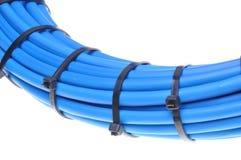 蓝色有线电视网 免版税库存图片
