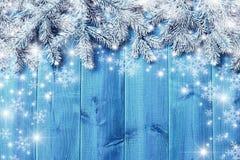 蓝色木板和圣诞树分支 库存照片