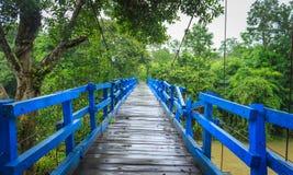 蓝色木桥梁 库存照片
