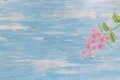 蓝色木背景的 库存图片