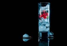 蓝色杯冰用莓果鹅莓红色黑醋栗和水 刷新的鸡尾酒 玻璃水瓶柑橘饮料冰橙色夏天水 库存图片