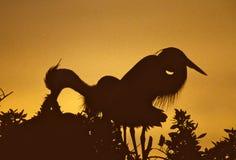 蓝色极大的苍鹭使日落套入 免版税库存图片