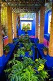 蓝色树荫处在Majorelle庭院里,马拉喀什 库存照片