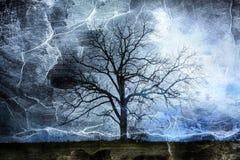 蓝色树  库存图片