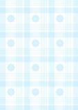蓝色格子花呢披肩 免版税图库摄影