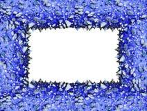 蓝色框架棘手的树干 免版税库存图片