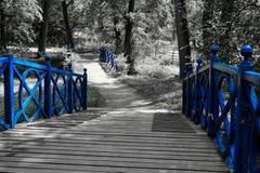 蓝色桥梁 免版税库存图片