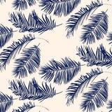蓝色棕榈叶样式 免版税库存图片