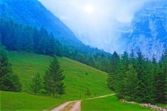 蓝色森林山 库存照片