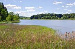 蓝色森林湖天空 免版税库存照片