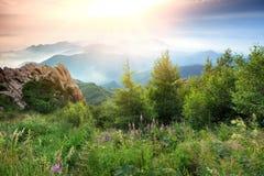 蓝色横向山山松天空夏天谷 库存图片