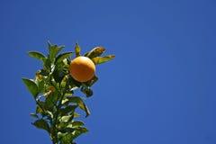 蓝色橙色天空 免版税库存照片