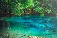 蓝色水池或鲜绿色水池美好的风景视图在雨林 免版税图库摄影