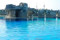 蓝色池游泳水 免版税库存照片