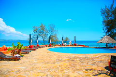 蓝色池游泳 库存照片