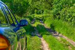 蓝色汽车在森林里 库存照片