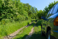 蓝色汽车在森林里 免版税库存照片