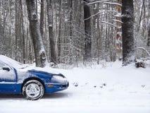 蓝色汽车白色雪多雪的干燥树 库存照片