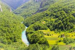 蓝色河在用绿色森林盖的高山中的一个美丽如画的峡谷流动 免版税库存图片