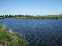 蓝色河流动在有植物的绿色银行之间 库存照片