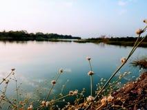 蓝色河 库存照片