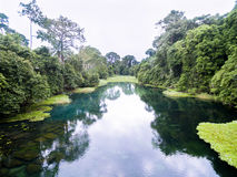 蓝色河/Tulu河/Niari河,刚果 库存图片