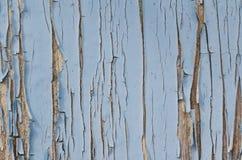 蓝色油漆在老木墙壁上崩裂了 免版税库存照片