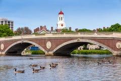 蓝色波士顿桥梁校园查尔斯时钟哈佛约翰在河天空塔结构树大学w星期 几星期在Harva跨接和在查尔斯河的钟楼 免版税图库摄影