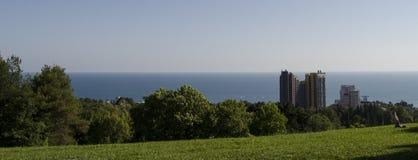 蓝色海、绿色木头和天空 库存照片