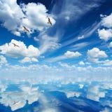 蓝色海和天空,白色云彩,晴朗的天气,三只海鸥fl 免版税图库摄影