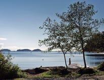 蓝色海在一晴朗的秋天天 图库摄影