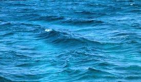 蓝色海宏指令的照片挥动 免版税库存图片