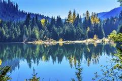 蓝色海岛Gold湖秋天Snoqualme通行证华盛顿 免版税图库摄影