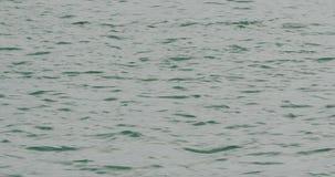 蓝色海或大海表面 影视素材
