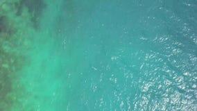 蓝色海水从上-从寄生虫射击了 股票视频