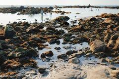 蓝色海看法和石头和海滩在日落 免版税库存照片