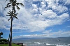 蓝色海洋和天空与摇摆的棕榈沿西部Maui's著名Kaanapali靠岸,夏威夷,美国 免版税库存照片