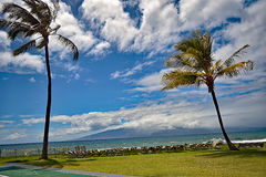 蓝色海洋和天空与摇摆的棕榈沿西部Maui's著名Kaanapali靠岸,夏威夷,美国 库存照片