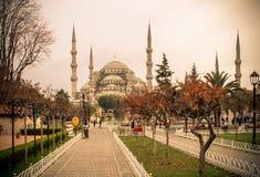 蓝色清真寺伊斯坦布尔 免版税库存图片