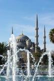蓝色清真寺和喷泉在伊斯坦布尔,土耳其 库存图片