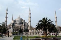 蓝色清真寺在TurkishIstanbul叫Sultanahmet Camii 库存照片