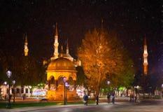 蓝色清真寺晚上 库存图片